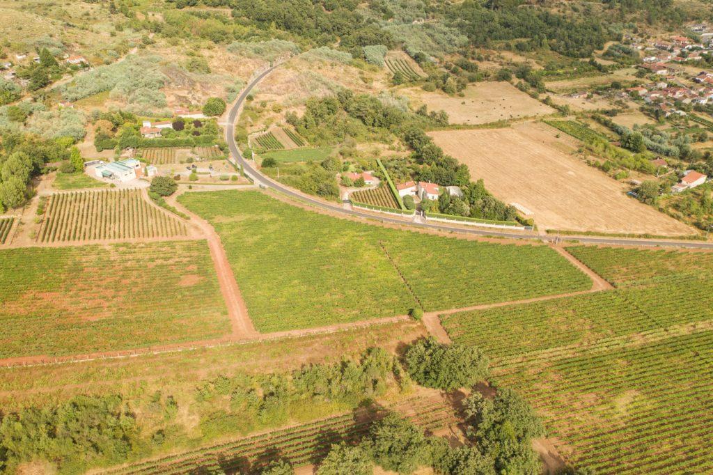 Paco Jover Drones fotografía aérea viñedos